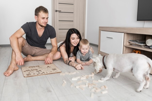 a family and their dog playing blocks